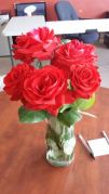 roses at altamontcowork